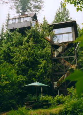 cedar creek tree house