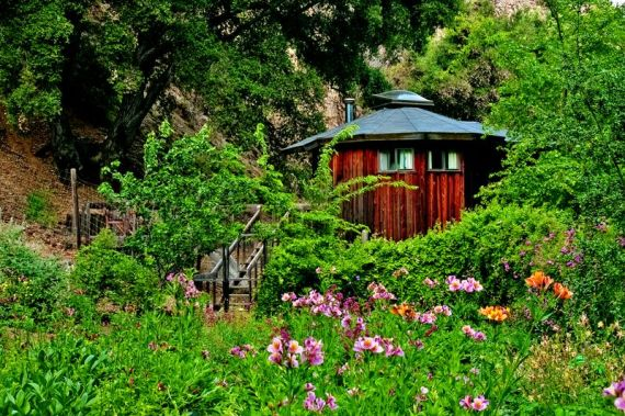 A Yurt on the Tassajara Grounds